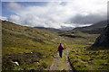 NC1321 : The Track from Glencanisp Lodge by Tom Richardson