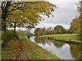 SJ9278 : Macclesfield Canal by Chris Morgan