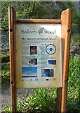 NX4858 : Wildlife interpretation board near Balloch Burn by Anthony O'Neil