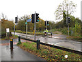 TQ5807 : Toucan crossing on Ersham Road by Stephen Craven