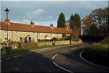 SK5451 : Papplewick - NG15 by David Hallam-Jones