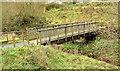 J4273 : Footbridge, Dundonald (3) by Albert Bridge