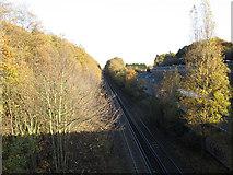 TQ4475 : Railway near Falconwood by Stephen Craven