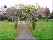 SO8832 : Pergola in Victoria Gardens, Tewkesbury by P L Chadwick