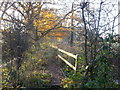 TQ7623 : Footbridge beside the River Rother (3) by David Anstiss