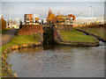 SJ8698 : Lock 5, Ashton Canal by David Dixon