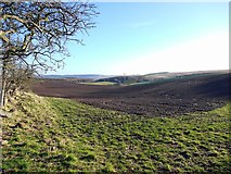 NU0122 : Arable land north of Ilderton by Andrew Curtis