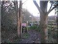 SE2804 : The Dove Valley Trail at Knabbs Lane by John Slater