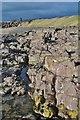 SD1878 : Hodbarrow Point by Ashley Dace