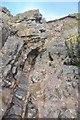 SD1878 : Folded Limestones by Ashley Dace