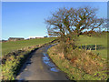 SJ9890 : Ernocroft Farm by David Dixon