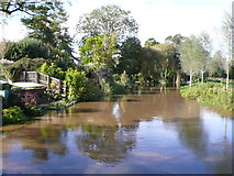 ST9102 : River Stour at Spetisbury by Nigel Mykura