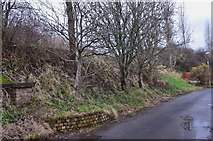 NT2540 : Embankment for the 'Peebles Triangle' railway by Jim Barton