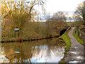 SJ9590 : Peak Forest Canal by David Dixon
