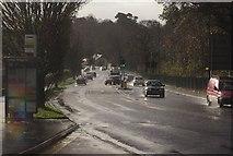 SX9065 : Newton Road, Torquay by Derek Harper