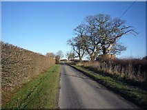 SE6959 : Sand Hutton to Bossall road by DS Pugh