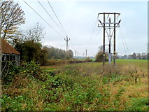SO8104 : Ryeford power lines by Jaggery