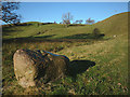 SD5395 : Erratic boulder by the footpath by Karl and Ali