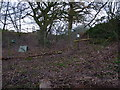 SO6592 : Pheasant pens near Upton Cressett by Richard Law