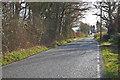 TR0334 : Unnamed Road to Bilsington by Julian P Guffogg