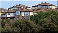 J5073 : The Oaks, Newtownards by Albert Bridge