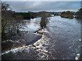 NX4164 : Flooded River Cree by David Baird