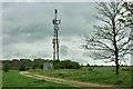 TQ3109 : Telecommunications mast, Ladies Mile by Robin Webster