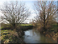 TL4154 : Bourn Brook in December by John Sutton