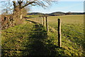 SO4428 : The Herefordshire Trail to the south of Marlas by Philip Halling