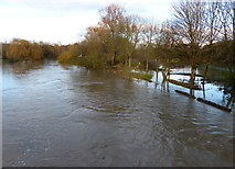 SK5907 : Flooding along the River Soar by Mat Fascione