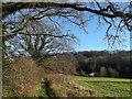 TQ7124 : Footpath to Hackwood Farm by David Anstiss