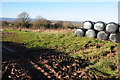 SO4227 : Silage bales at Cross Llyde by Philip Halling