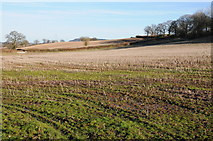 SO4430 : Stubble field near Kilpeck by Philip Halling