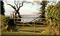 J5264 : Gate, Reagh Island, Strangford Lough by Albert Bridge