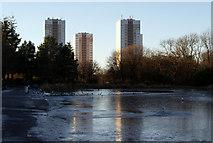 NS6168 : Springburn Park by Thomas Nugent