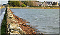 J5265 : Causeway to Reagh Island, Strangford Lough by Albert Bridge