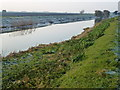 TL3390 : The River Nene (Old course) near Benwick by Richard Humphrey