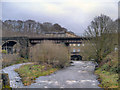 SD7915 : River Irwell, Brooksbottoms Viaduct by David Dixon
