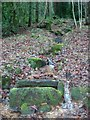 SK3352 : Spring and Stone Trough in Shining Cliff Woods by Jonathan Clitheroe