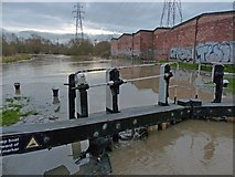 SK5702 : Flooding at St. Mary's Mill Lock by Mat Fascione