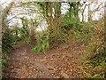 SX8868 : Green lane junction above Kingskerswell by Derek Harper