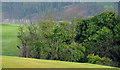 J4582 : Helen's Bay golf course (3) by Albert Bridge