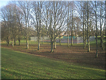 SU6050 : Public tennis courts - Stratton Park by Given Up