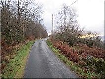 NR9666 : Road above Ostal Bay by Richard Webb