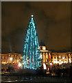 TQ2980 : Trafalgar Square Christmas tree 2012 by Steve  Fareham