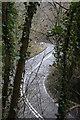 SK2656 : Via Gellia through the trees by Graham Hogg