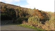 NF7828 : Road end,  Loch Aineort by Richard Webb