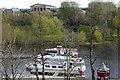 SJ4065 : Tour boats on the Dee by Bill Harrison