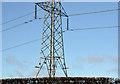 J2454 : Pylons and power lines, Edentrillick near Dromore (2) by Albert Bridge