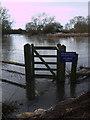 SU1796 : Flooded River Thames near Hannington Bridge by Vieve Forward